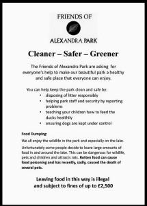 clean sage green